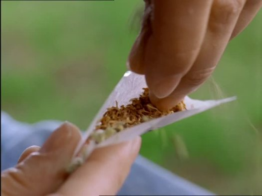 603067670-rolling-a-joint-marihuana-joint-cannabis-tabacco